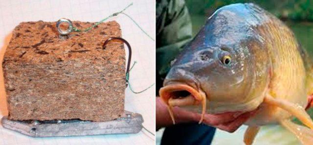 Макуха для рыбалки своими руками: лучшие рецепты, инструкции и советы
