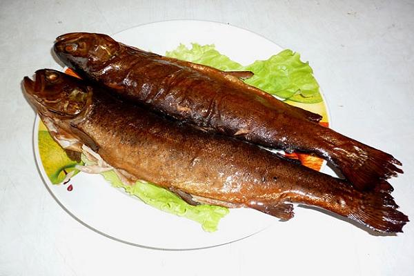 Рыба голец польза и вред, где водится, вкусные рецепты
