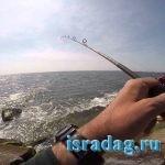 Ловля на джиг для начинающих, рыбалка на джиг с берега и лодки