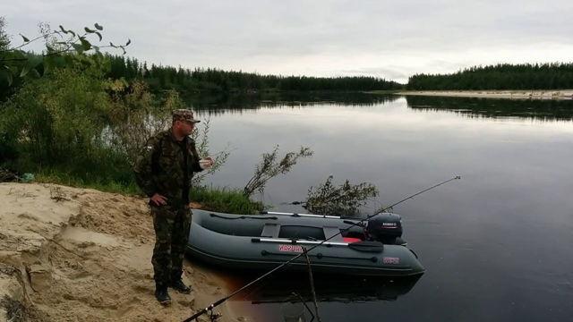 Ловля судака на живца с берега и с лодки: оснастка и техника ловли