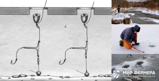 Ловля форели зимой на платниках: снасти, оснастка, приманка и наживка