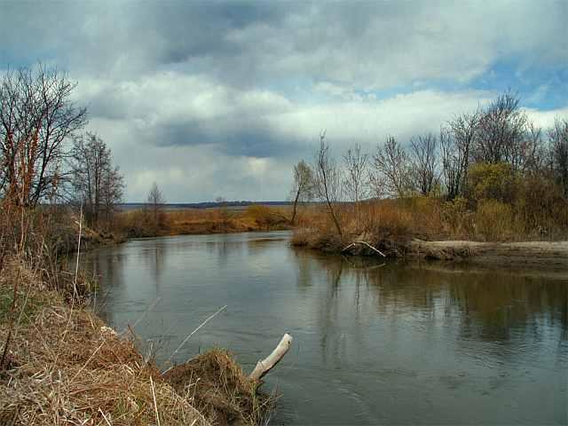 Ловля плотвы на фидер весной, летом и осенью, на течении и в стоячей воде