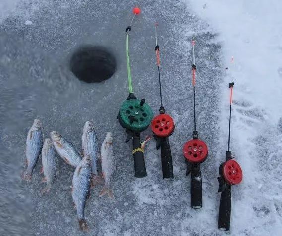 Ловля плотвы зимой, снасти для зимней рыбалки на плотву