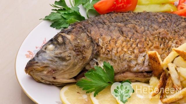 Рыба карп: калорийность, состав, польза и вред, рецепты