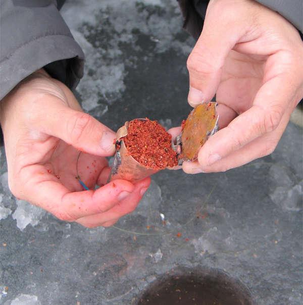 Прикормка для окуня зимой, своими руками - фото и видео