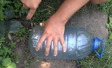 Как сделать раколовку своими руками