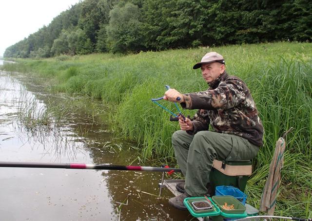 Горох для рыбалки: как правильно сварить, как насаживать