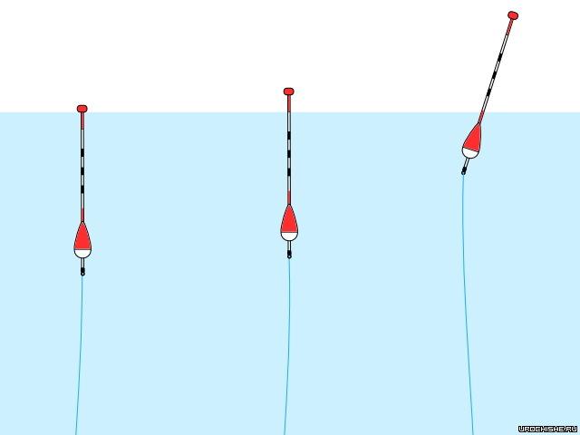 Поплавок на леща, выбор лучшего поплавка