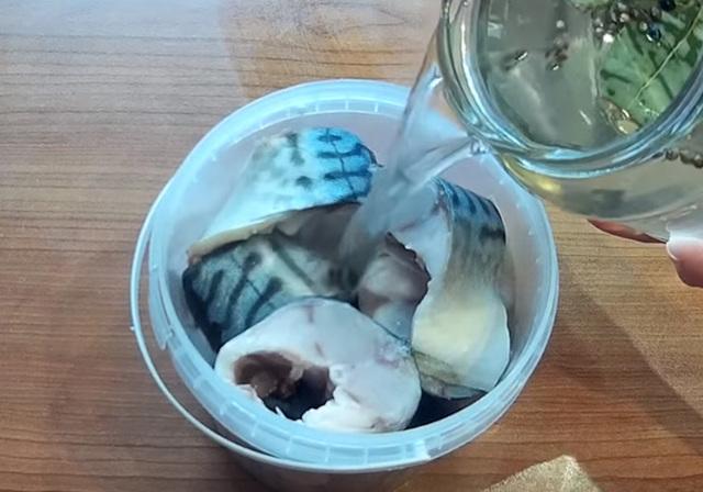 Как солить скумбрию в домашних условиях, лучшие рецепты