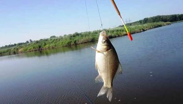 Рыбалка поплавочной удочкой: оснастка, техника ловли