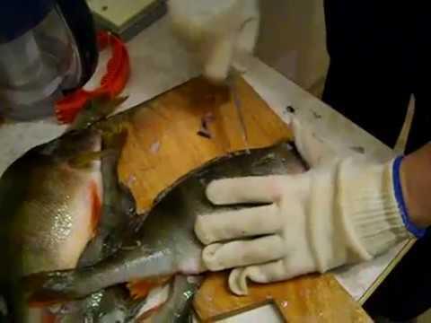 Как быстро почистить окуня от чешуи, чистка речного и морского окуня