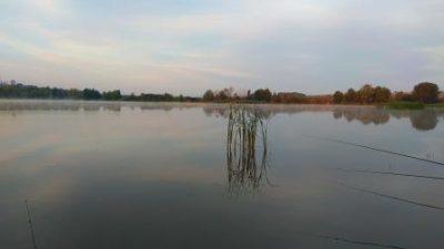 Ловля ротана на спиннинг и на поплавочную удочку