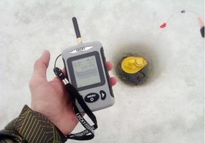 Ловля сазана зимой со льда: снасти, наживки и где ловить