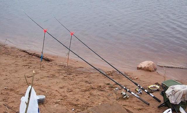 Донная снасть для ловли карася: разные виды оснасток