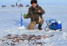 Домашние самоделки для рыбалки своими руками, для зимней и летней рыбалки