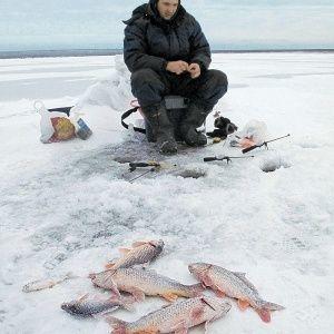 Ловля карася на мормышку зимой