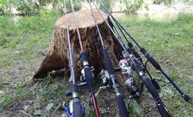 Удочки для летней рыбалки: виды удочек их отличия, как выбрать лучшую