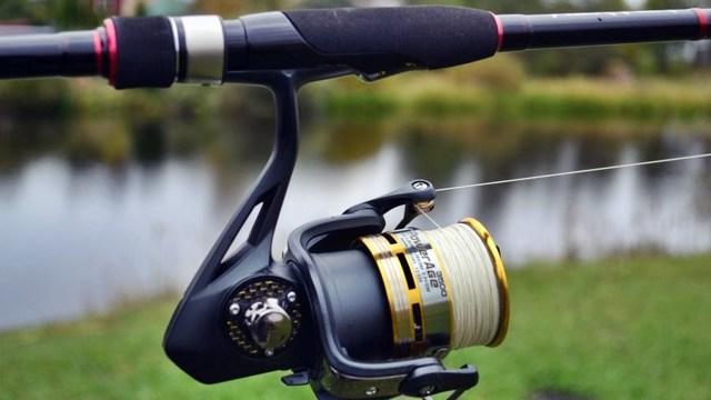 Снасть для ловли судака: спиннинг, оснастка, лучшие приманки