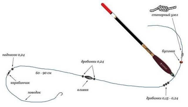 Как ловить карася на поплавочную удочку: оснастка, наживка